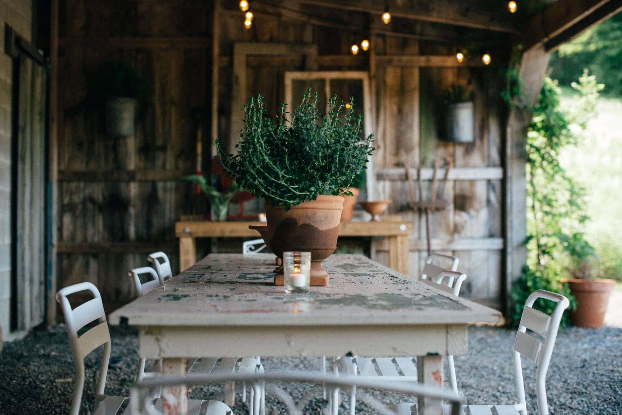 mnd-farm-wedding-venue-westerlo-ny-13